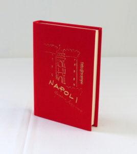 Diario Napoli